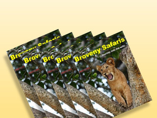 Discover Broveny Safaris by reading our online magazine...