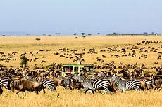 kidepo-valley-national-park-uganda.jpg