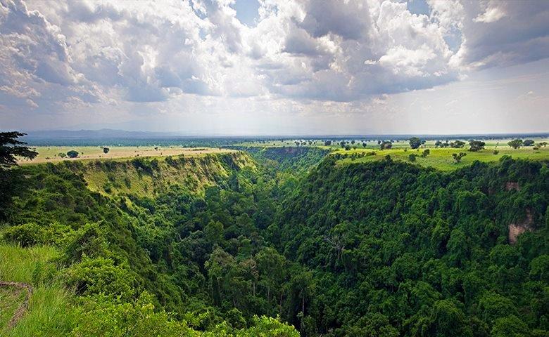 Kyambura George