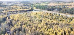 Canada Nickel _Crawford Property-Main Zo