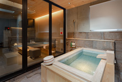 DX Suite Room: Luxury private bath