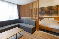 DX Suite Room: Living room2