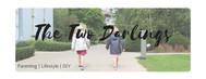 The Two Darlings blog.jpg