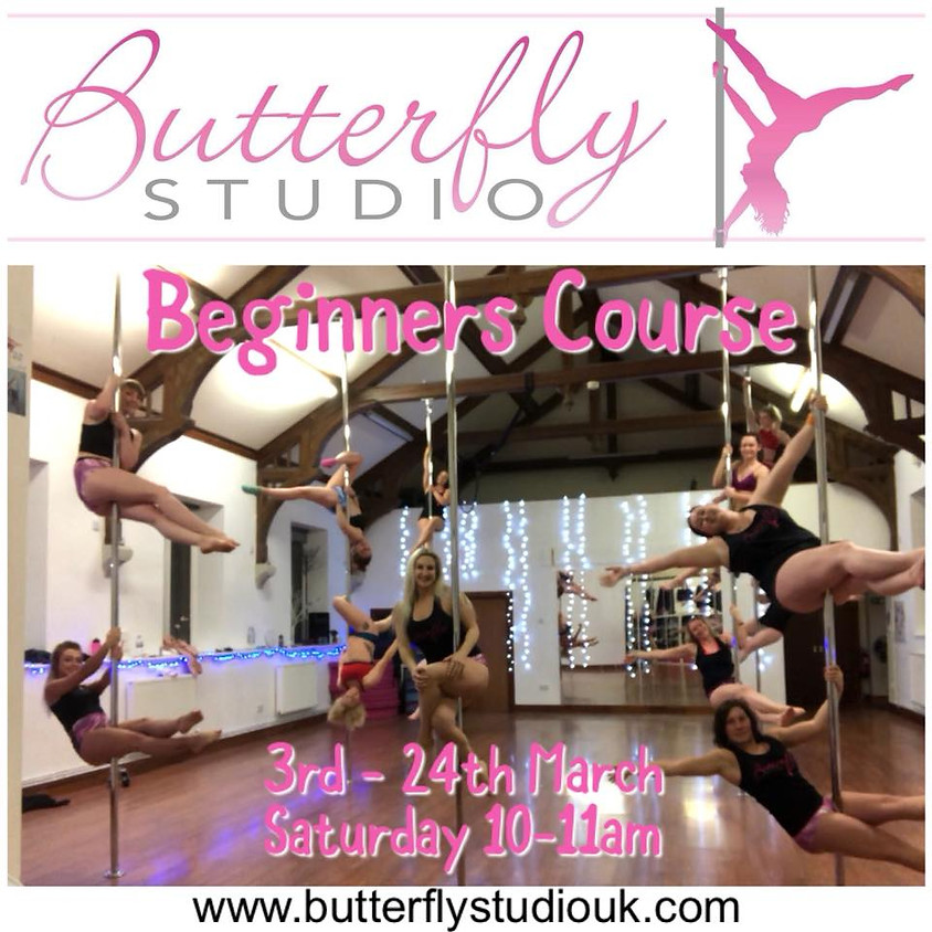 Beginners Pole Fitness 4 Week Course - March