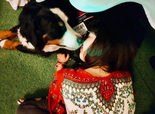 Mi vida junto a Janis, un perro de asistencia