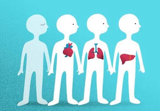 6 de junio: Día mundial del paciente trasplantado.
