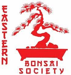 Eastern Bonsai Logo.jpg