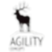 agility%20logo%20png_edited.png