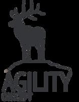 לוגו אג'יליטי.png