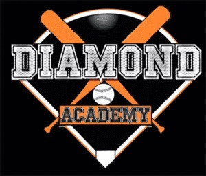 Diamond Academy Scout Day Event