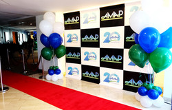 AMAP Conference step and repeat banner