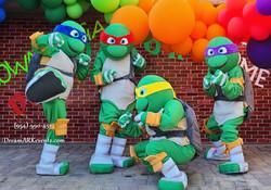 Ninja Turtle Theme Party Decoration!1