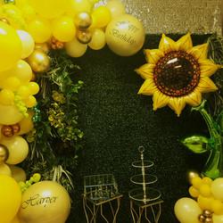 Greenery Backdrop & Sunflower!