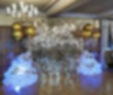 Silver Sequin-Shimmer Backdrop.jpg
