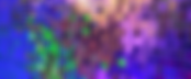 Shimmer Sequin active wall5.webp