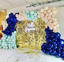 Gold Shimmer Backdrop and Organic Balloo