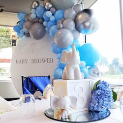 Baby Shower Custom Backdrop