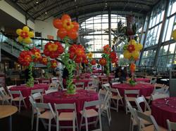 Hawaii balloon flowers