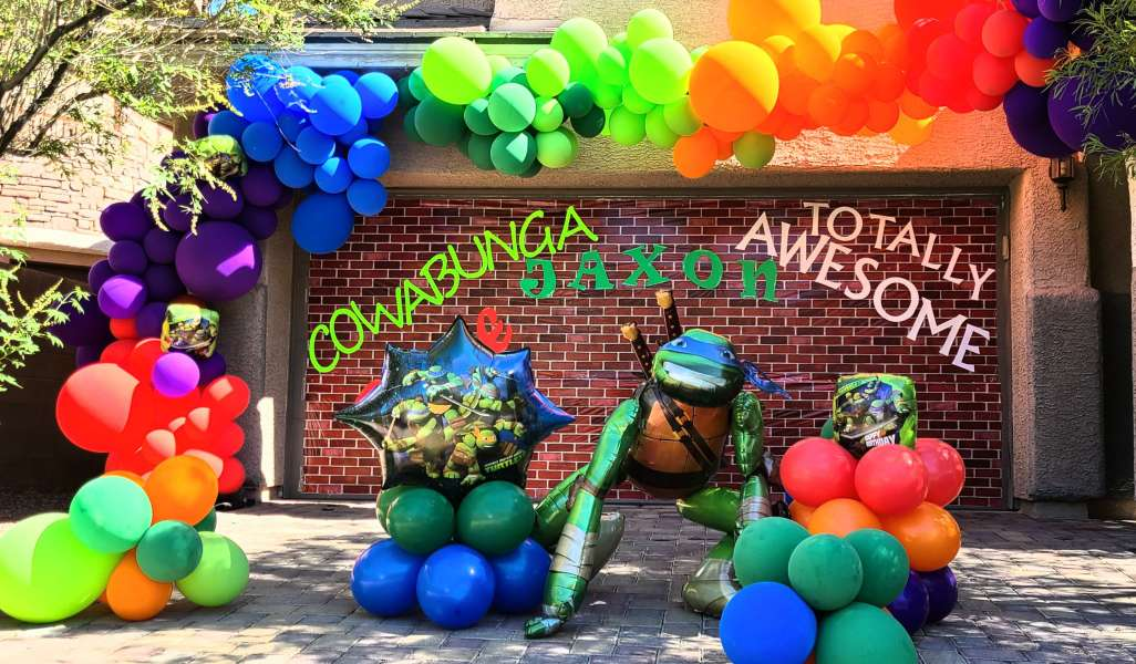 Ninja Turtle Theme Decoration