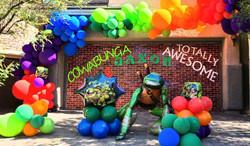 Ninja Turtle Theme Decoration