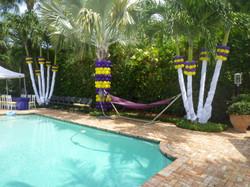 Backyard Party Decoration