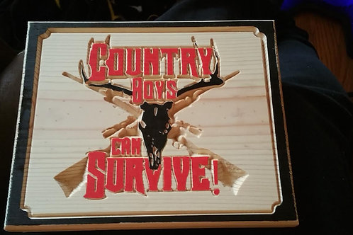 Country Boys Can Survive