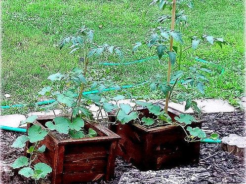Handmade Wooden Planter Box (Small)