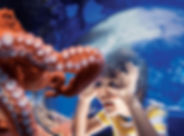 Octopus and Boy Banner 1900x700.jpg