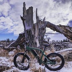 Dr Stoner E Bikes