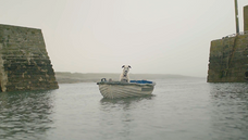 2018 | I Watched the White Dogs of the Dawn Els Dietvorst