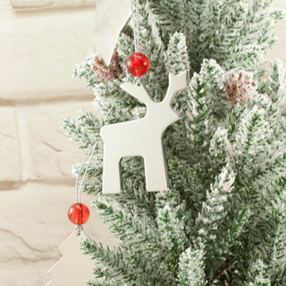 Charm Ornaments