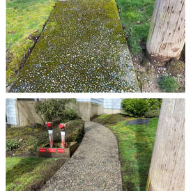 Before and after flatwork