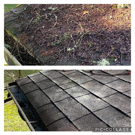 Before and after a Roof Shampoo®