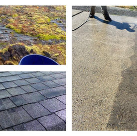 Two before and after photos of some of the services we provide.