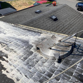 Bleach Free Roof Shampoo®