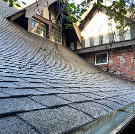 After a Roof Shampoo®