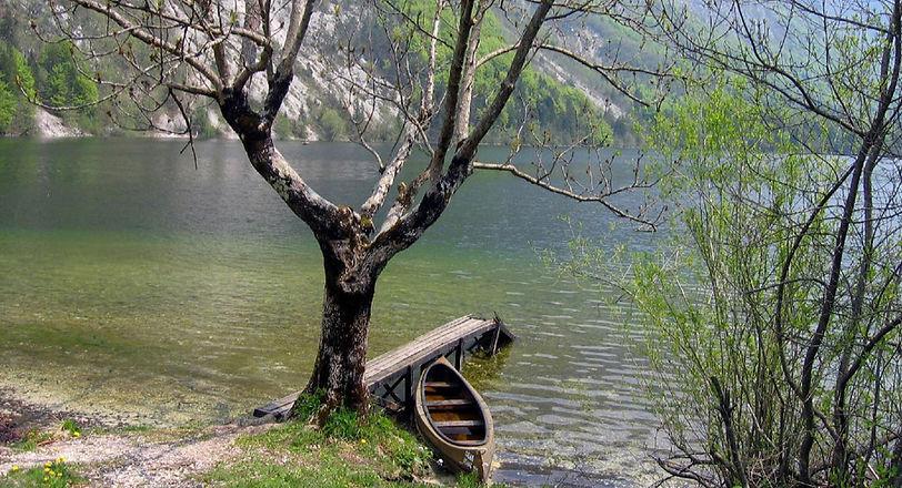 Peaceful Lake View _edited.jpg