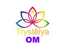 Logo OM_4.3 sur fond 4.3.png