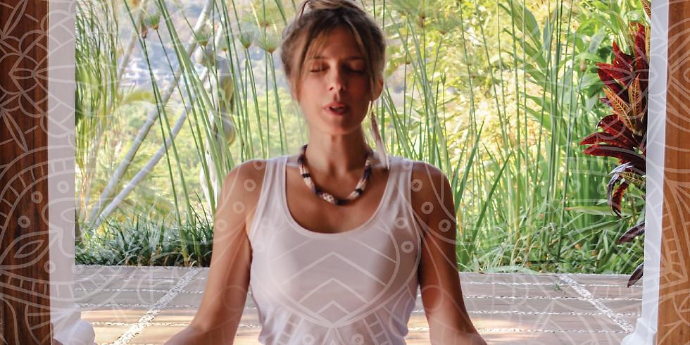 All Senses Yoga® Workshop in Forchheim