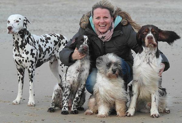 Dogs Paradise Artgerechtes Hundefutter, Barfpläne, kostenlose Beratung und Testessen für Hund und Katze