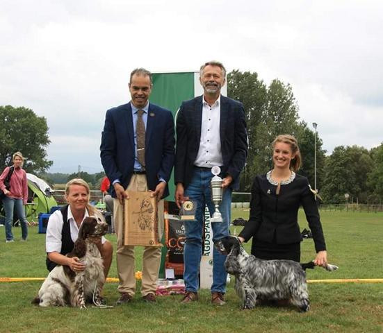 Feeby Klub Working Champion 2019 Jagdspaniel Klub
