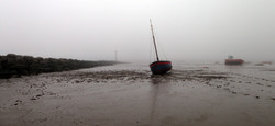 Out of the mist and sea