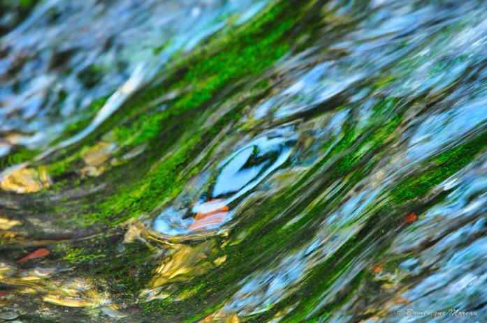 Coeur de l'eau