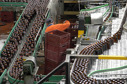Bavaria ( Beer company )