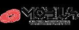 Mobius Logo 2 Renkli.png
