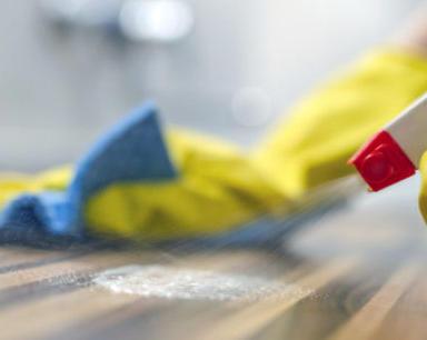 Disinfectant Wipes/Spray
