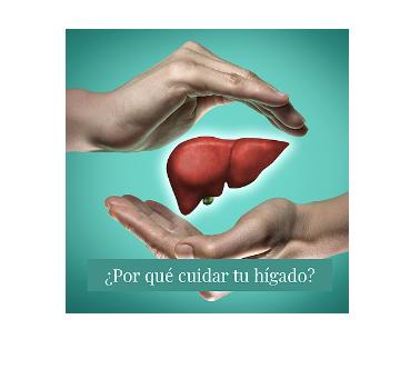 Por qué Cuidar el hígado?