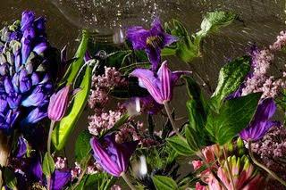Flower Splash Blue
