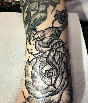 dotowrk tattoo, ornamental tattoos,bird tattoo, rose tattoos, work in progress, sleeve in progress, black and grey tattoos, girl tattoos, deity tattoo, divine canvas tattoo, animal tattoos