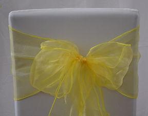 Daffodil Shimmer